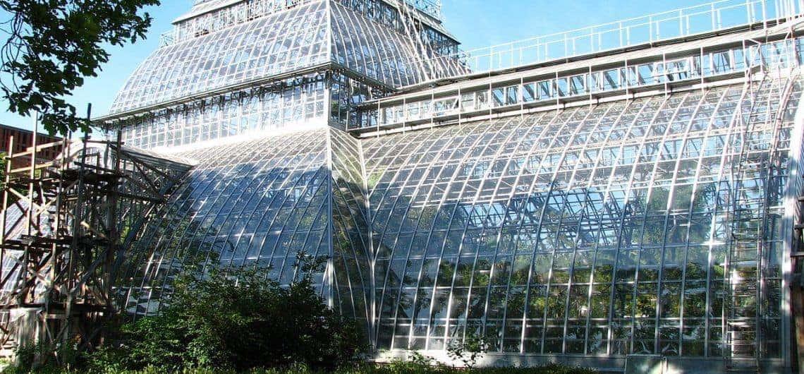 Recorrer el Jardín Botánico de San Petersburgo; Conocer el Jardín Botánico de San Petersburgo; Visitar el Jardín Botánico de San Petersburgo