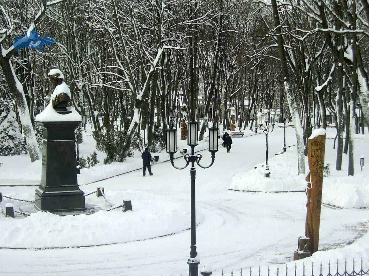 Que ver en el Parque Tolstoi en Briansk; Visitar el Parque Tolstoi en Briansk; Recorrer el Parque Tolstoi en Briansk