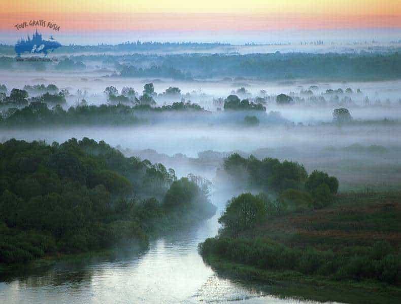 Que ver en el Bosque de Briansk; Conocer la reserva del Bosque de Briansk