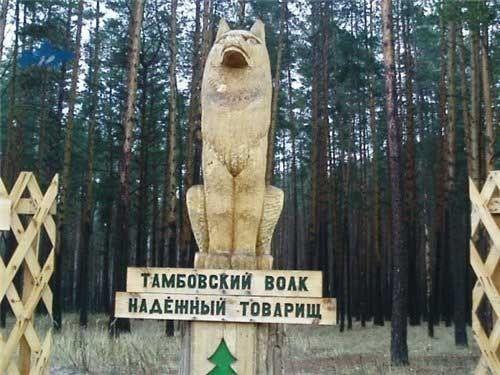 Excursionar en el museo del Lobo en Tambov; Que ver en museo del Lobo en Tambov