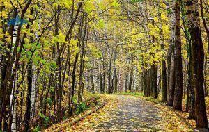 visitar parque suizo de Nizhni Novgorod