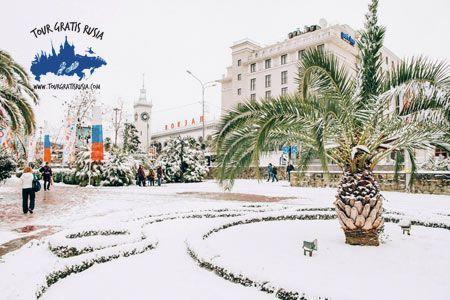 Conocer Sochi en navidad; Pasear en invierno en Sochi; Tour Invierno en Sochi